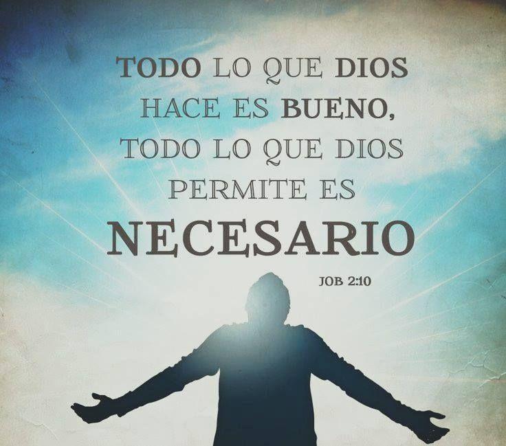 Job 2:10 ... ¿Qué? ¿Recibiremos de Dios el bien, y el mal no lo recibiremos? En todo esto no pecó Job con sus labios.♔