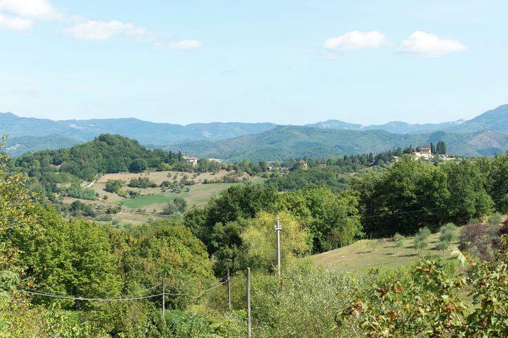 In prossimitá (estate) (<1 km)