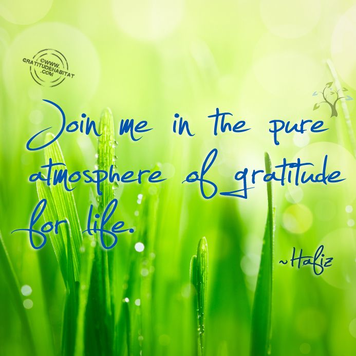 """Join me in the pure atmosphere of gratitude for life."" ~Hafiz~"