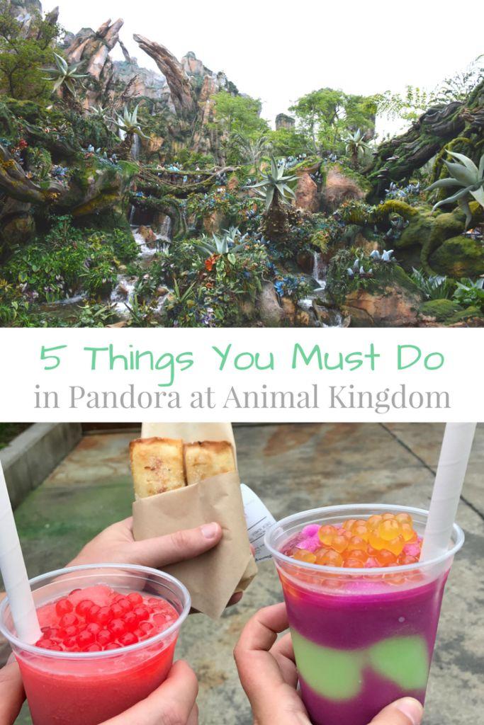 5 Things You Have to Experience at Pandora (Animal Kingdom – Shanda Ness