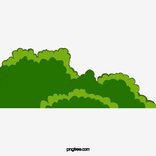 Green Plants Shrubs And Grasses Summer Plant Png Transparent Clipart Image And Psd File For Free Download Green Plants Shrubs Plant Background