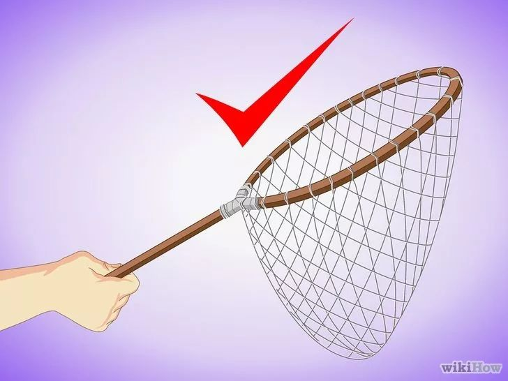 Immagine titolata Make a Handmade Fishing Net Step 8