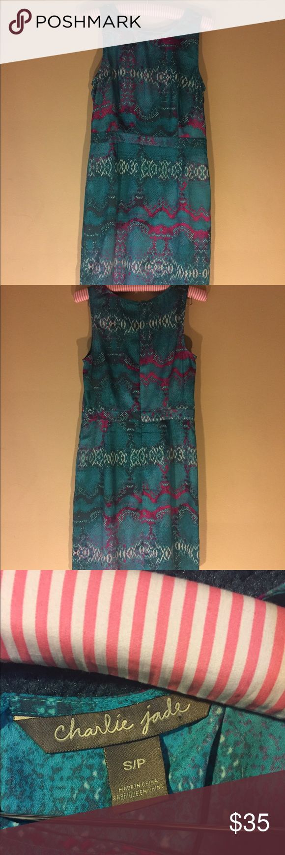 Charlie Jade Teal Blue & Pink Print Dress Charlie Jade   Teal Blue & Pink Print Dress  Size: Small Zippers in back.  Lined skirt.  100% polyester.  Hand Wash cold.  No defects or stains.  Excellent pre-owned Condition Charlie Jade Dresses Midi