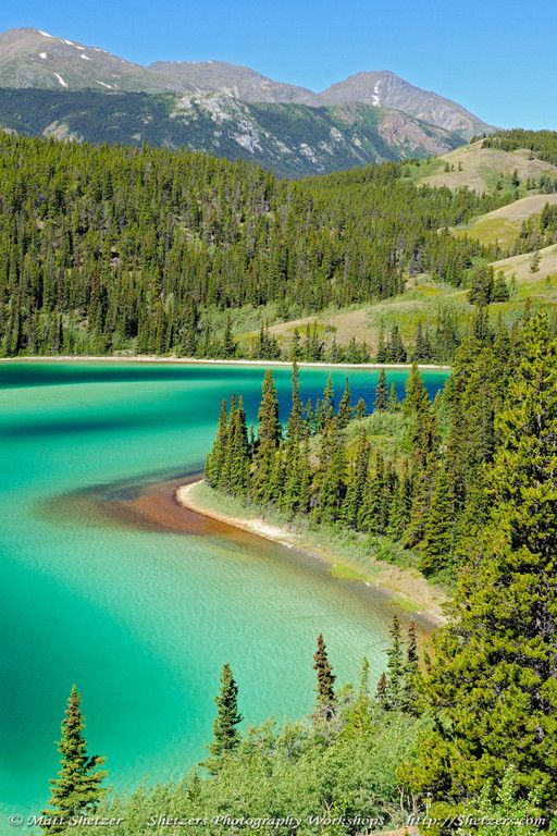 Emerald Lake ~ On the Klondike Highway is between Skagway, Alaska and Whitehorse, Yukon is the beautiful Emerald Lake. The brilliant green of the water is a result of calcium carbonate leaching from the limestone gravels of the valley. This shallow lake was formed like most lakes in the north by glacial retreat.