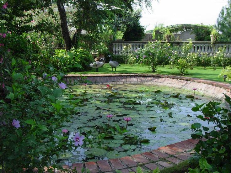 43 best images about a peaceful setting on pinterest for Garden designs in pakistan