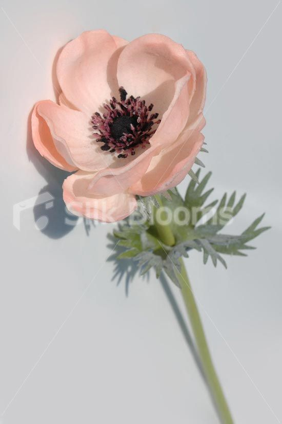 Single artificial fresh touch blue anemone silk blue poppy blue single artificial fresh touch blue anemone silk blue poppy blue poppy silk wedding flowers and white anemone mightylinksfo
