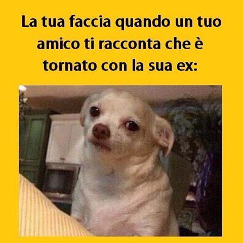 #tmlplanet #amici #amore #ex