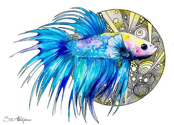 Betta fish watercolor painting print 8 x 12 by slaviart on for Betta fish painting