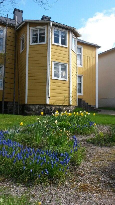 Blomsterrabatten frodas i solskenet vid Borgargården. #EKTAMuseumcenter #Ekenäs #Museum