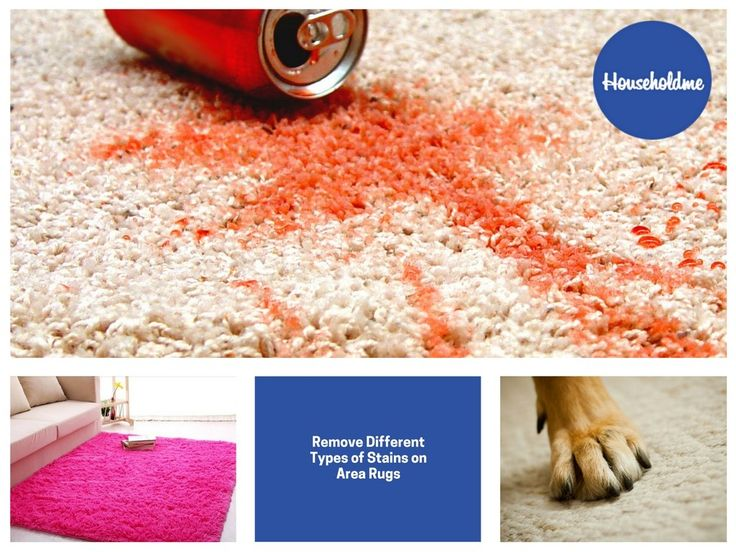 Remove Different Types of Stains on Area Rugs  #rugs #carpet #arearugs #stain #carpetstain
