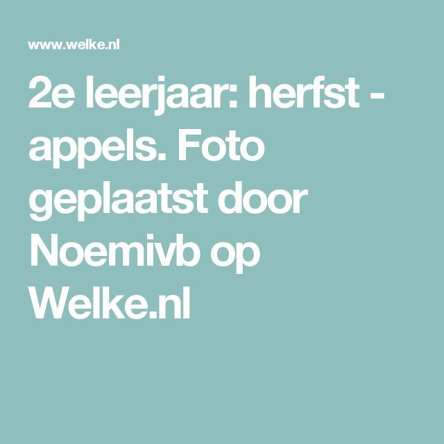 2e leerjaar: herfst - appels. Foto geplaatst door Noemivb op Welke.nl