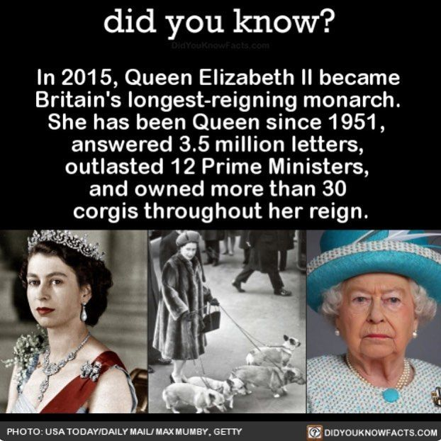 Her Majesty! #interesting #history #hermajesty #thequeen Download our free App: [LINK IN BIO]