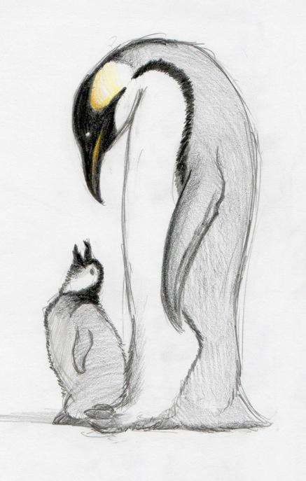 Penguin sketch tattoo   never enugh dachshunds & penguins   Pinterest