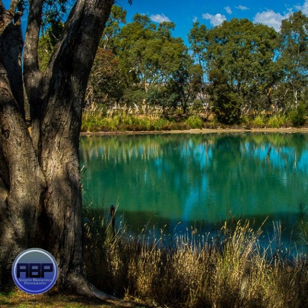 An absolutely beautiful lake at Adelaide's very own Maggie Beer's Farm in the Barossa Valley wine region! #Photooftheday #Adelaide #Australia #Landscape