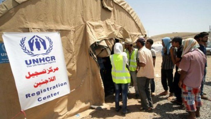 Sweden grants blanket asylum to Syrian refugees