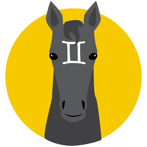 Finally, Horse Zodiac Signs Have Arrived. What's Yours?