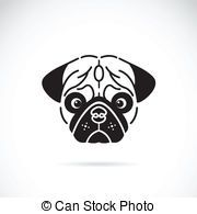 Vector image of pugs face on white background