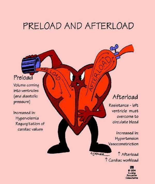 Preload Afterload                                                                                                                                                                                 Más