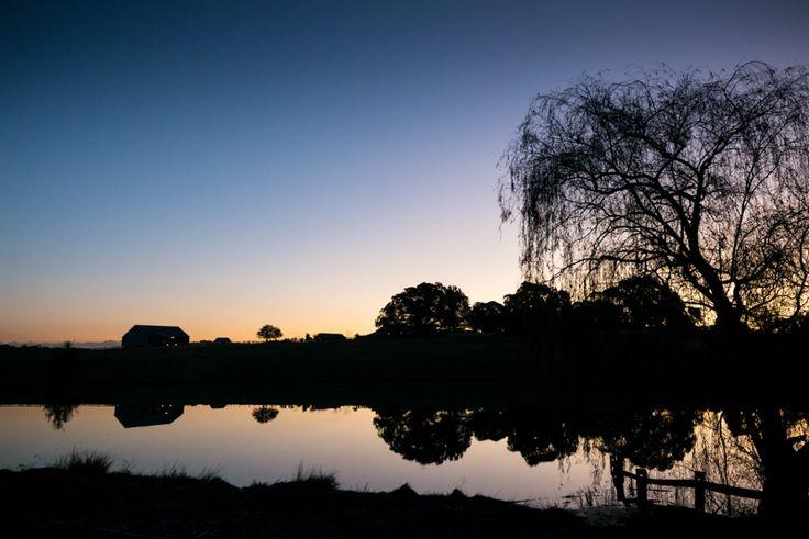 Tocal Sunset