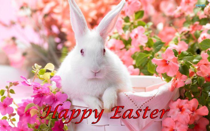 Free Wallpaper Easter Bunny Rabbits