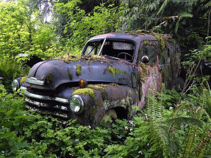200 best images about vintage car graveyard on pinterest for Unclaimed motor vehicle ohio