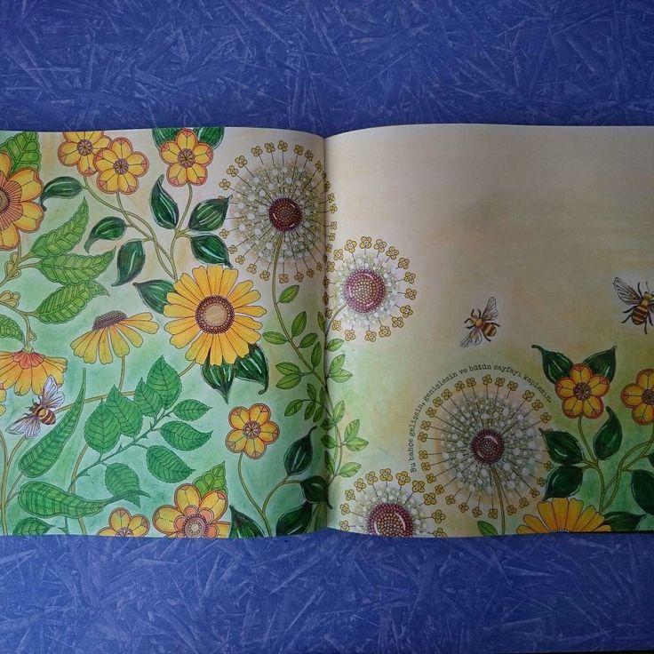 Johanna Basford, secret garden coloring book, Faber-Castell