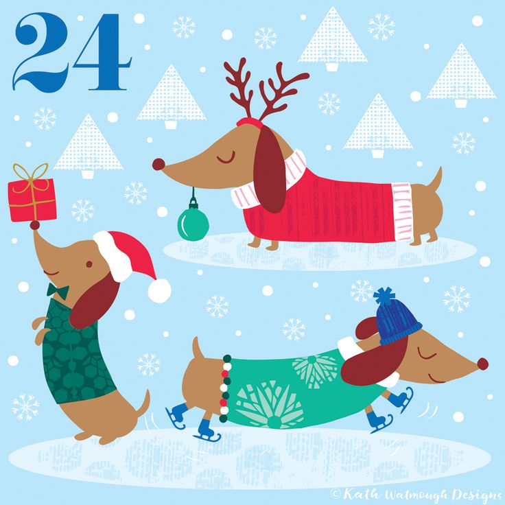 Day 24 - Even the dogs are excited for tomorrow!  #makeitindesign #dachshunds #dogs #advent #adventcalendar #adventcalendar2017 #adventcalendarart #adventchallenge2017 #illustration #christmascountdown #christmascalendar #christmas #freelance #freelancedesigner #christmas2017 #kathwatmoughdesigns www.instagram.com/kathwatmough