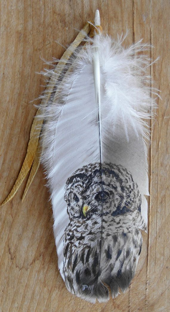 Barred Owl Hand Painted on Turkey Feather by patmorrisartist