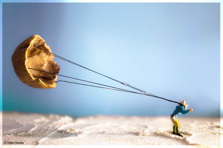 #parachute #sky #sports #skysports #food #walnut #