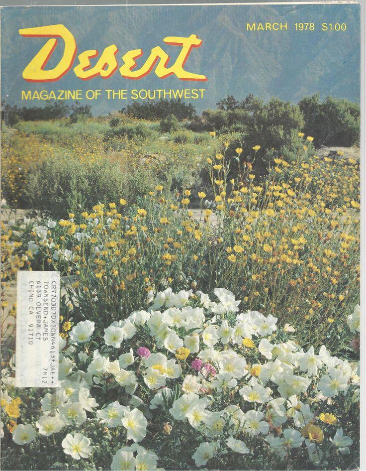 Dune Primrose Marigolds Desert Magazine March 1978 Palm Desert California    #doesnotapply