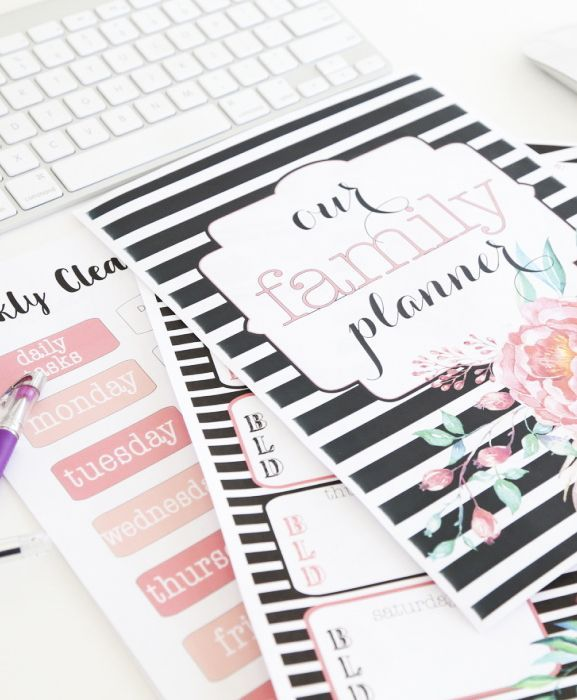 We've got 3 styles of Free Home Organizational Printables to get your organized plust 3 steps to get your binder established.