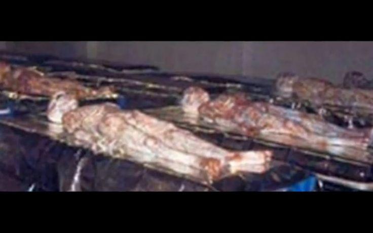 Dead Alien bodys from Roswell UFO crash?