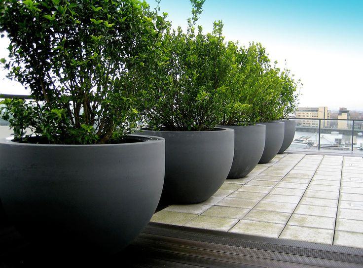 Urbis Globe planters on roof terrace.  Pinned to Garden Design - Pots & Planters by Darin Bradbury.