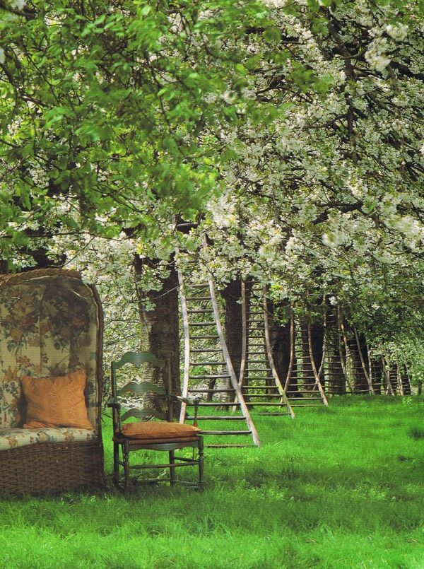wallacegardens:  Yesterday's gardens: Vintage Ladders.  Photo:  Lucinda Lambton, World of Interiors, July 1992.