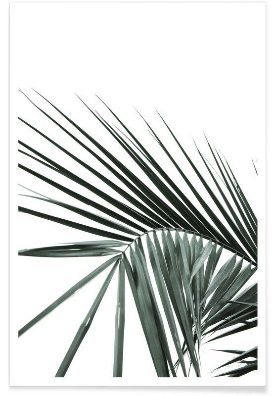 Zinkwazi als Premium Poster von Shot by Clint | JUNIQE