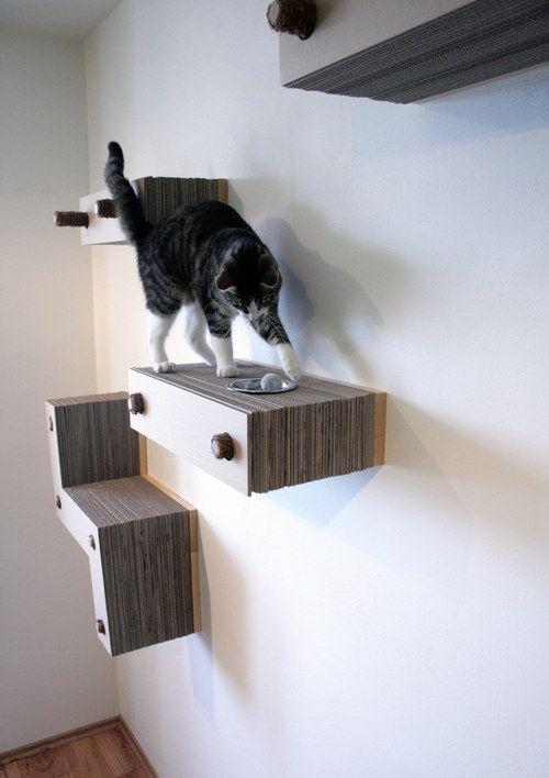 die besten 25 katzen wandregale ideen auf pinterest steampunk badezimmer rohrm bel und punk. Black Bedroom Furniture Sets. Home Design Ideas