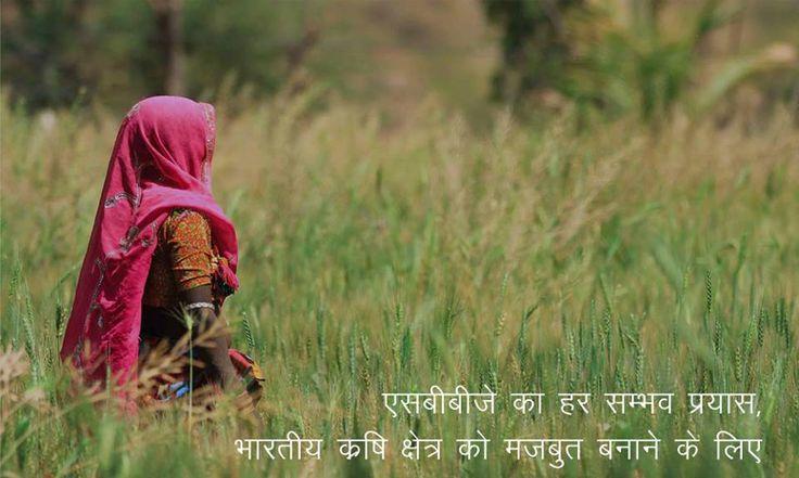 एसबीबीजे, का हर संभव प्रयास भारतीय कृषि क्षेत्र को मजबूत बनाने के लिए.  एसबीबीजे के विभिन्न कृषि योजनाओं की अधिक जानकारी के लिए लॉग ऑन करें - https://goo.gl/J4wIWM  #SBBJJaipur #Agriculturalschemes #onlinebanking #financialservices