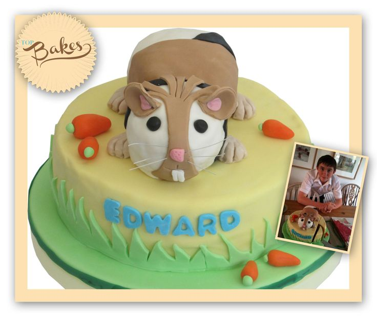 29 Best Guinea Pig Cakes/Cupcakes Images On Pinterest