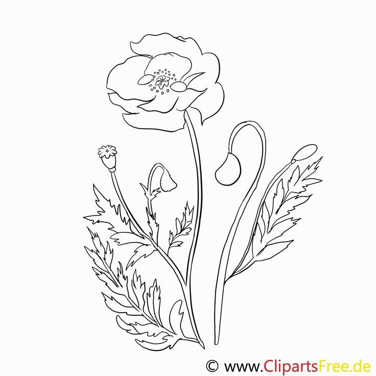 Malvorlagen Blumen Ranken Malvorlagen blumen