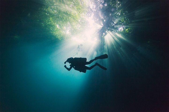The lure of the ocean has long enticed humans into its depths; there is some intangible quality roused by something so immense and ancient. Freelance photo