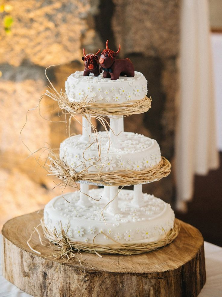 902 best wedding cakes images on pinterest cake wedding wedding a vintage dress for a rainy day humanist wedding at coo cathedral junglespirit Choice Image