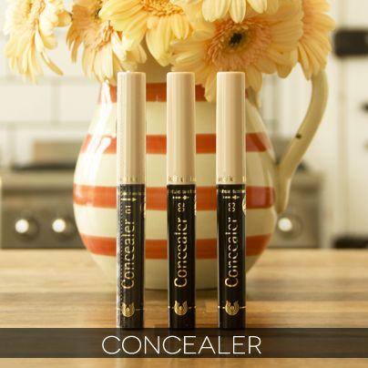 Dr. Hauschka - Concealer Make up Stick!