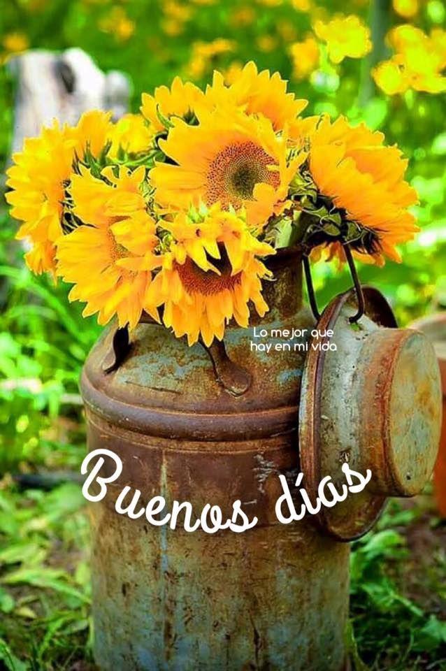 Buenos Días imagen #10344 - Buenos días - Imágenes y fotos de 'Buenos Días' con frases para facebook, whatsapp y twitter.