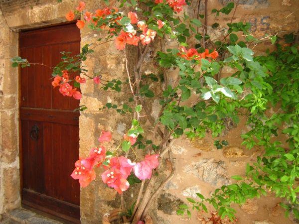 Wooden door with flower