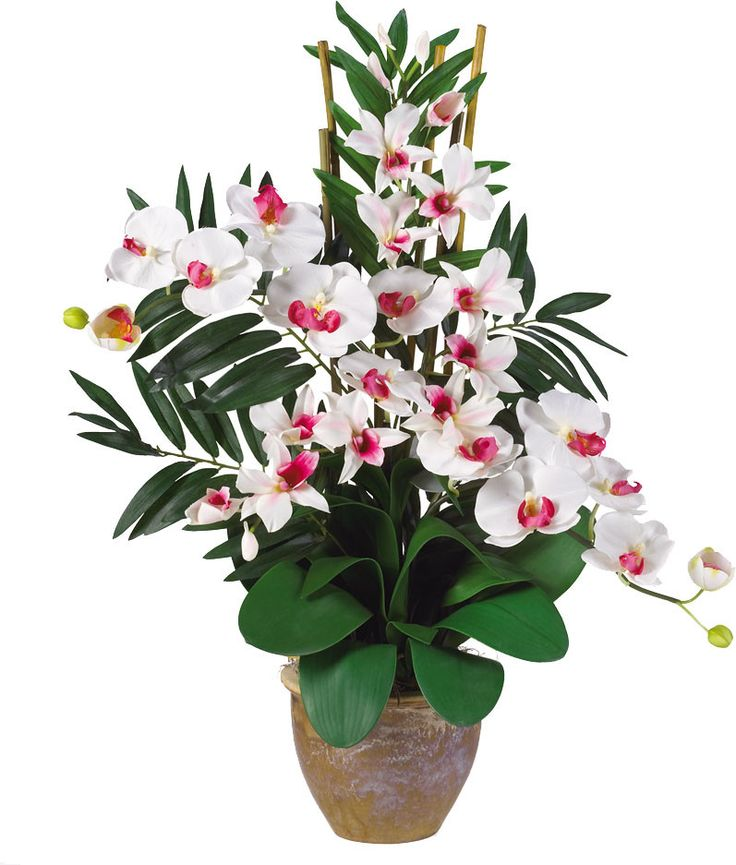 Double Phalaenopsis and Dendrobium Silk Orchid Flowers in White