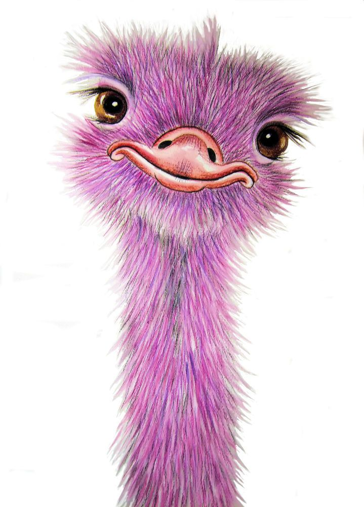 *PINK OSTRICH* A4 PRINT From Original Watercolour By Maria Moss #Impressionist