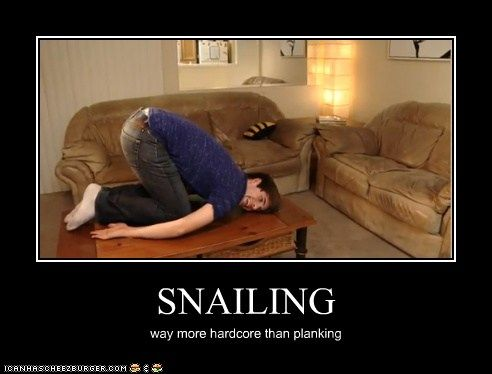 snailing: Worth Reading, Funny Things, Snailing Yes, Funny Stuff, Snailing Omg, Bahahaha, Snailing Hahahahhaa, Ahhhhh Hahah, Can'T Stop Laughing