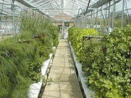 They also work very well for city farms and greenhouses.