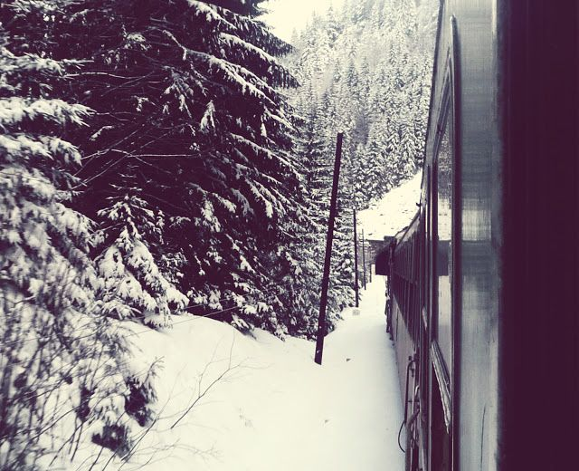 View from train in Winter