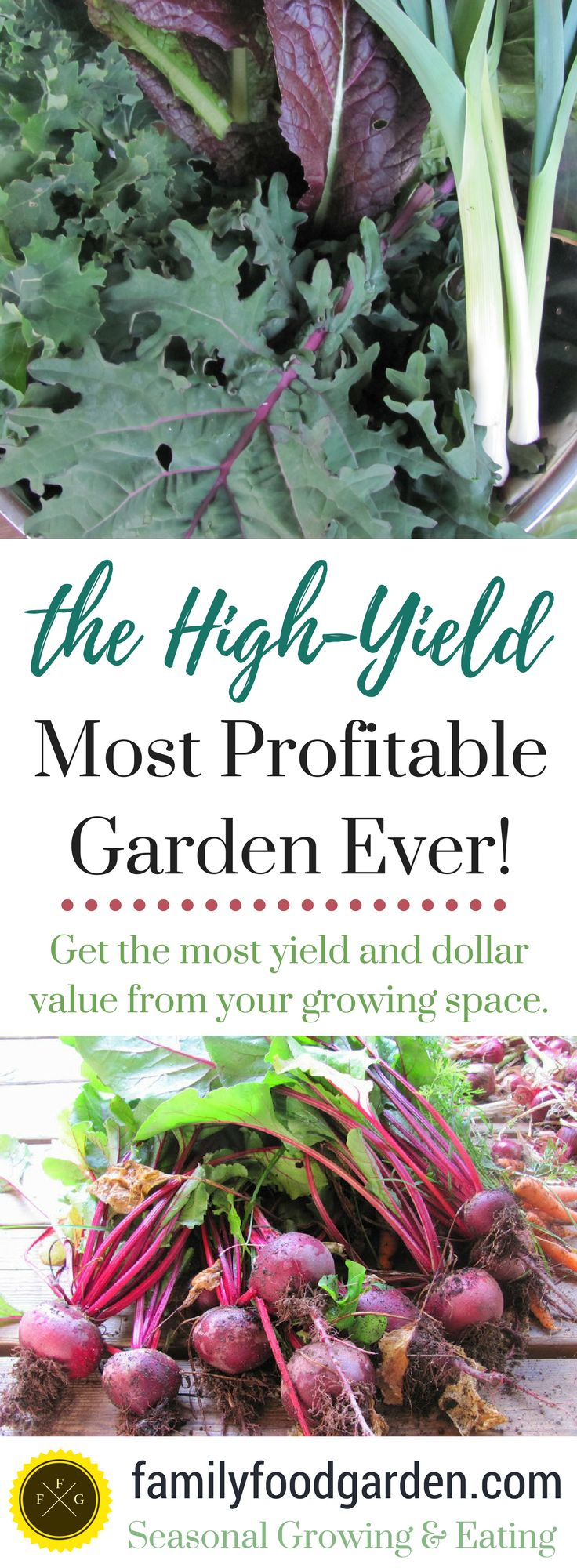 Every time I go to the grocery stores the past year I cringe at the prices of most food. Luckily we're planning a large family food garden that's high yielding and offers the best dollar value for the growing space. Here are some tips for getting the most yield and dollar value from your growing s